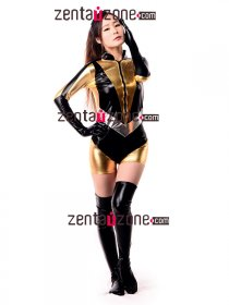 Sexy Shiny Metallic Silk Spectre Catsuit Superhero Suit